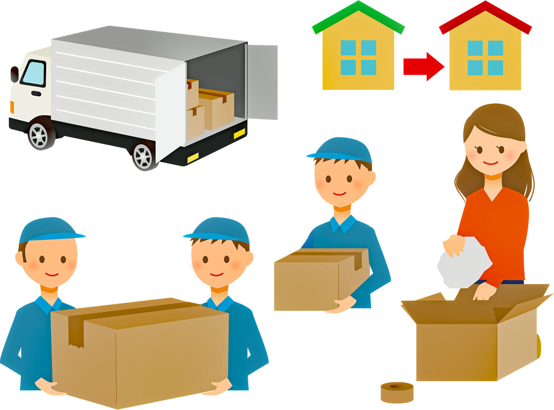 Are you looking for removals?
